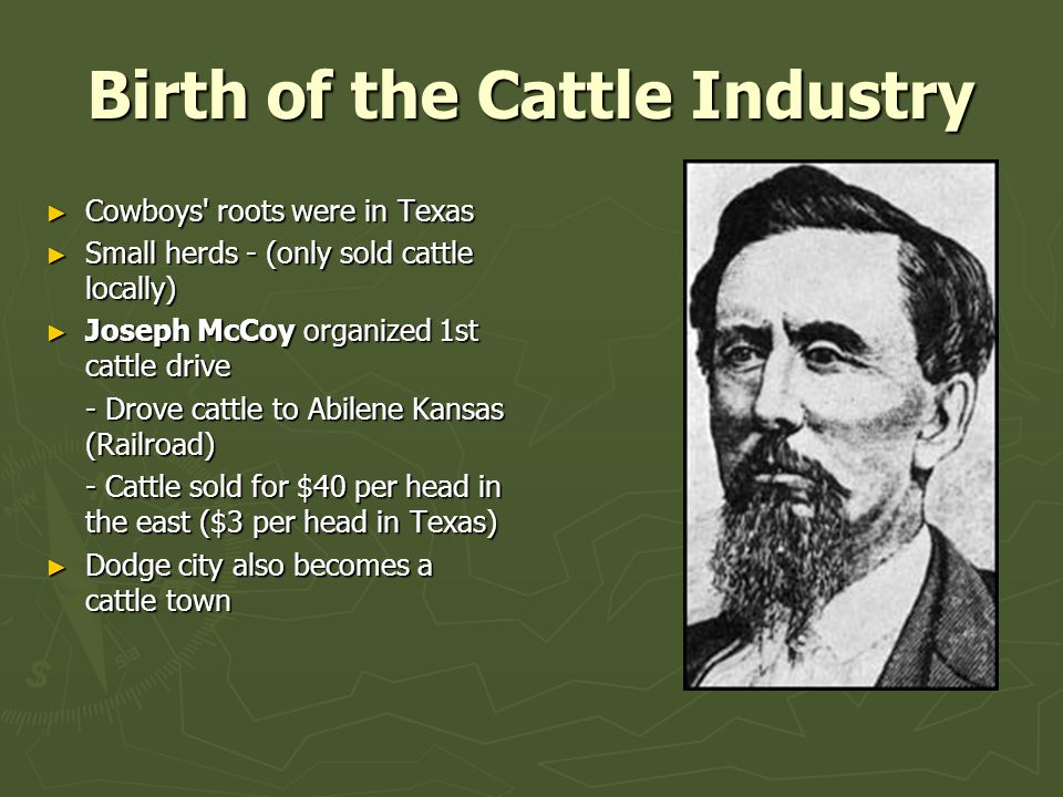 Birth of the Cattle Industry