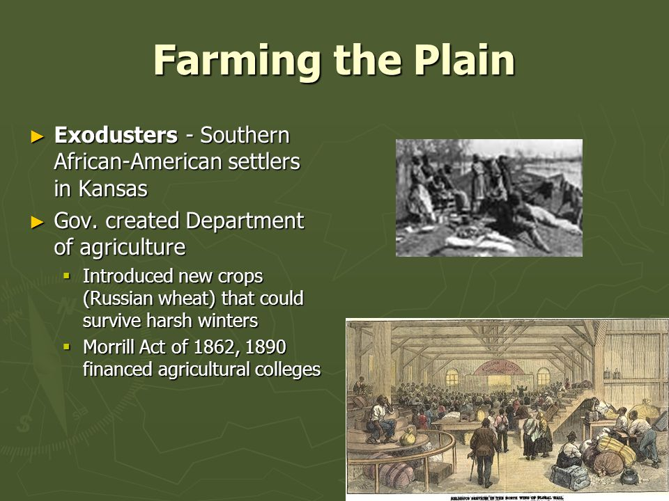 Farming the Plain Exodusters - Southern African-American settlers in Kansas. Gov. created Department of agriculture.