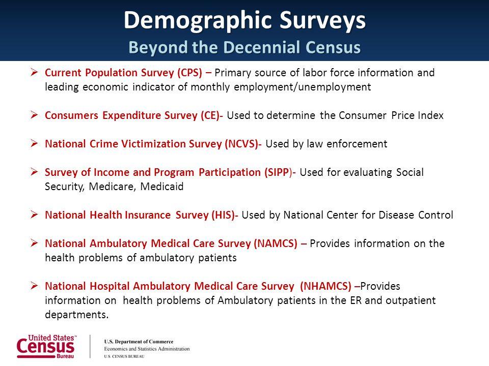 Demographic Surveys Beyond the Decennial Census