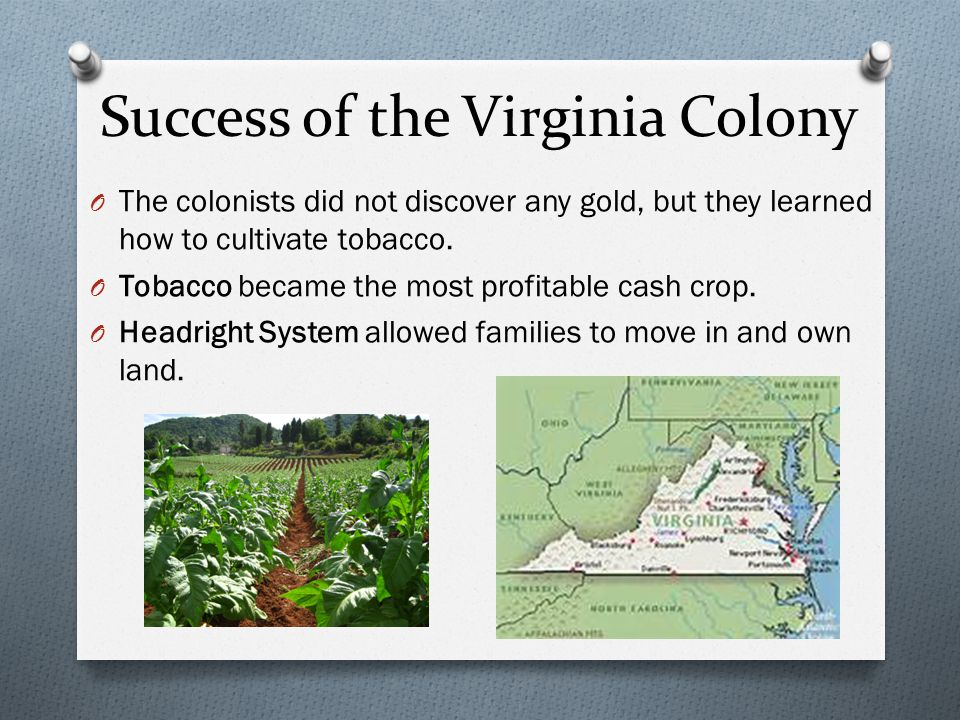 Success of the Virginia Colony