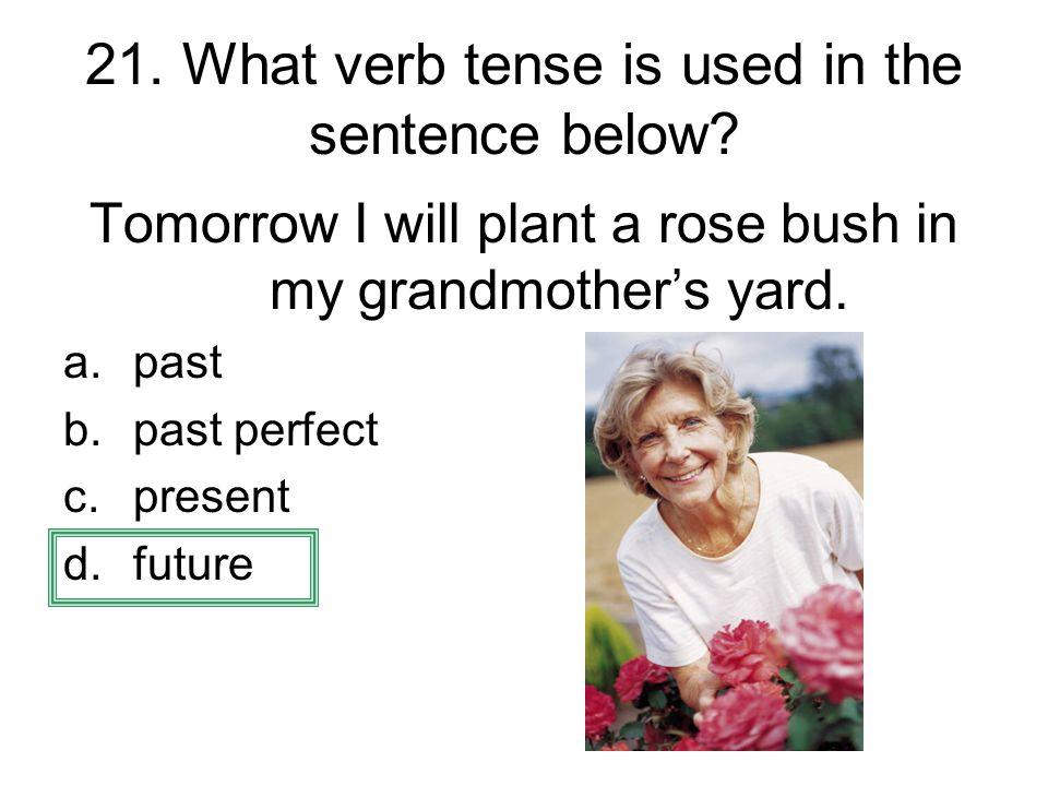 21. What verb tense is used in the sentence below