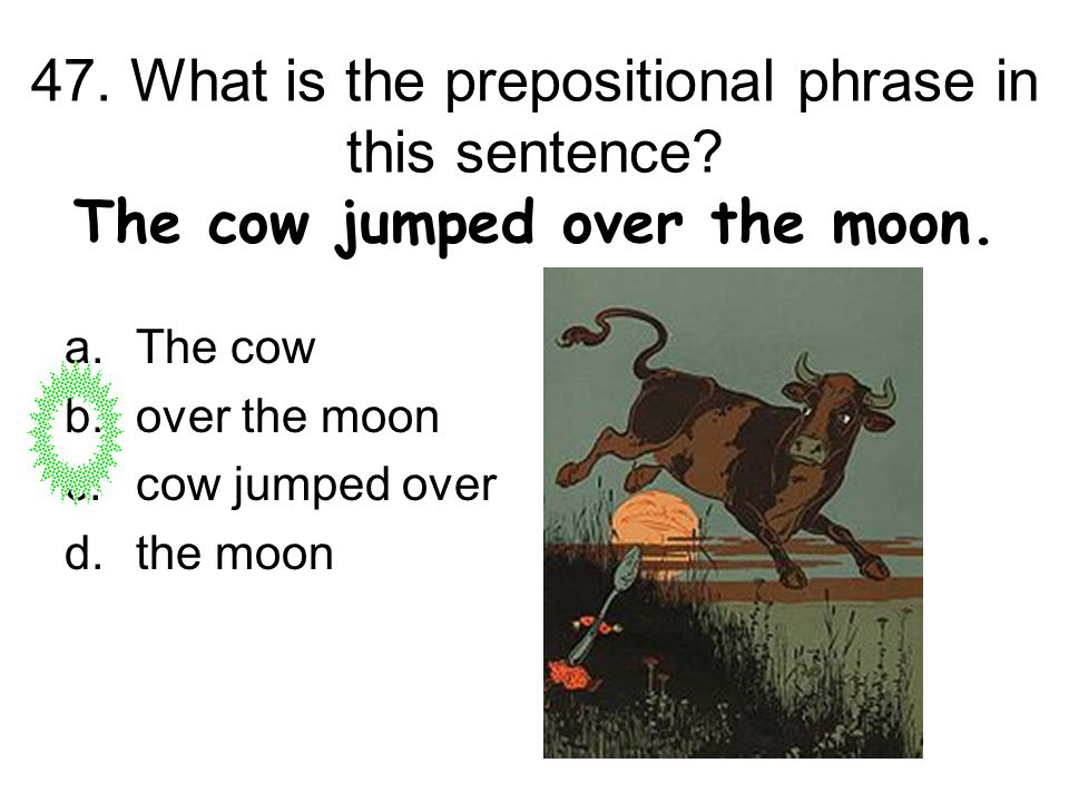 47. What is the prepositional phrase in this sentence