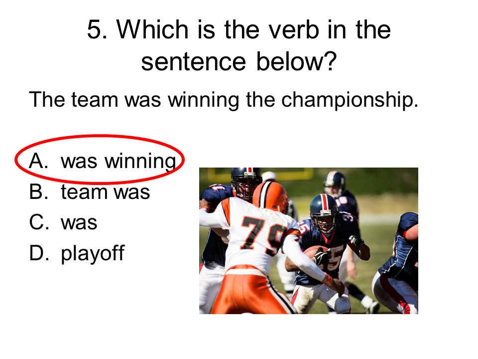 5. Which is the verb in the sentence below