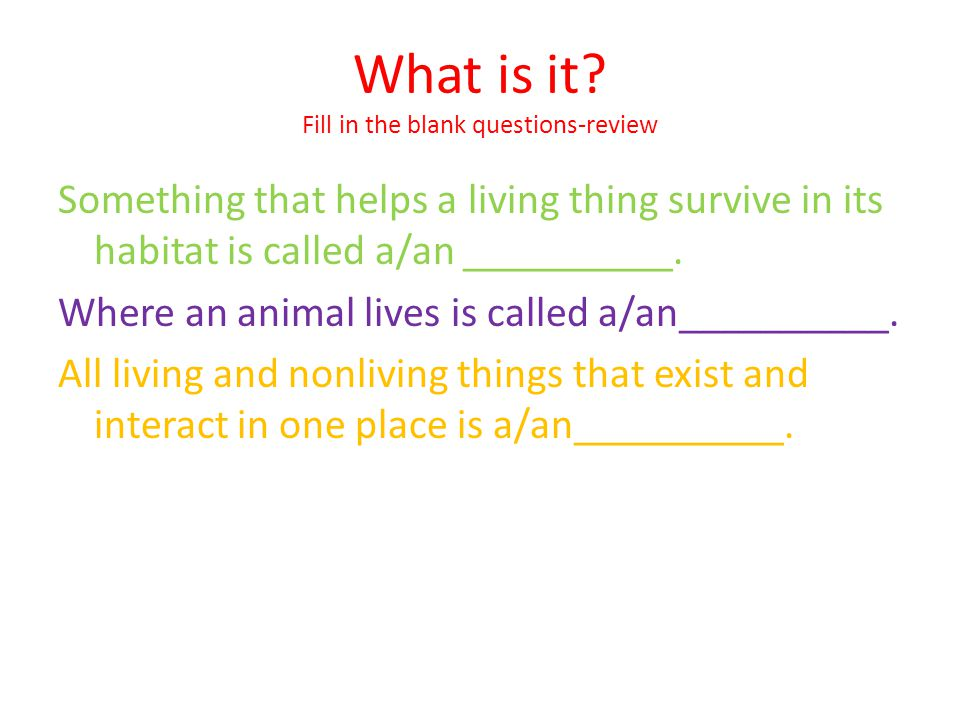 What is it Fill in the blank questions-review