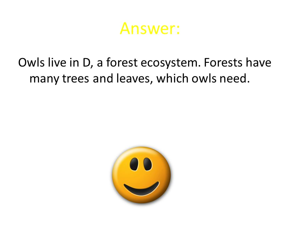 Answer: Owls live in D, a forest ecosystem. Forests have many trees and leaves, which owls need.