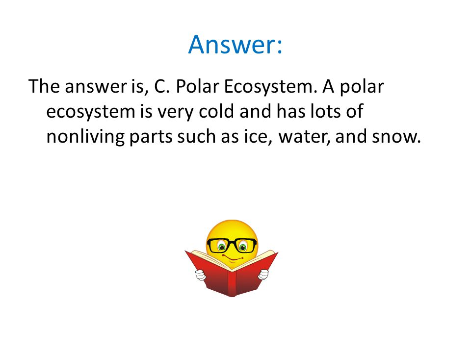 Answer: The answer is, C. Polar Ecosystem.