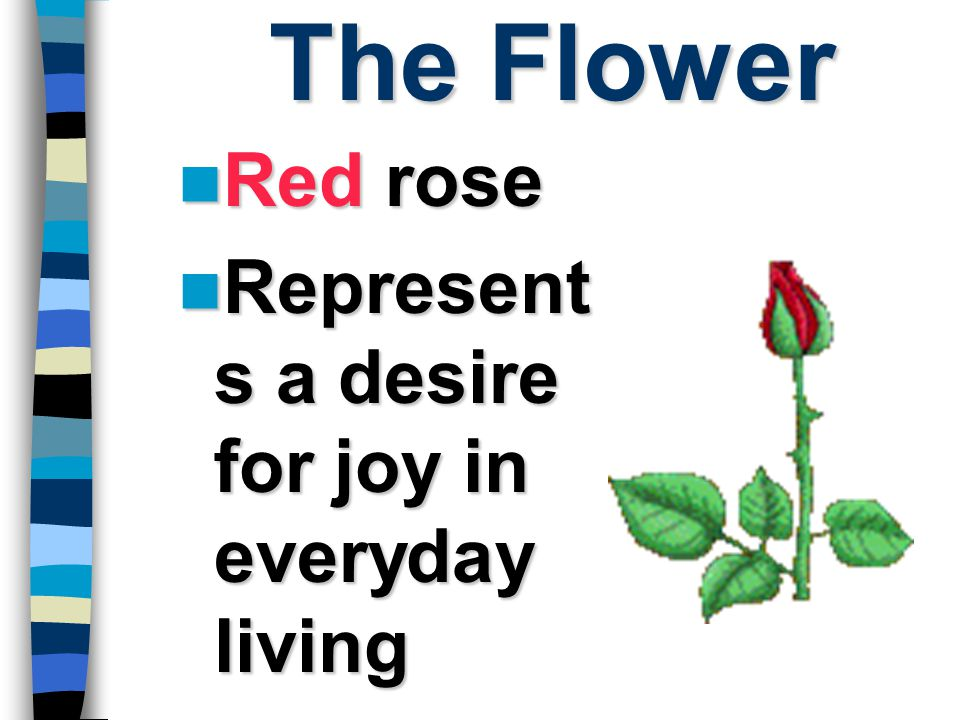 The Flower Red rose Represents a desire for joy in everyday living