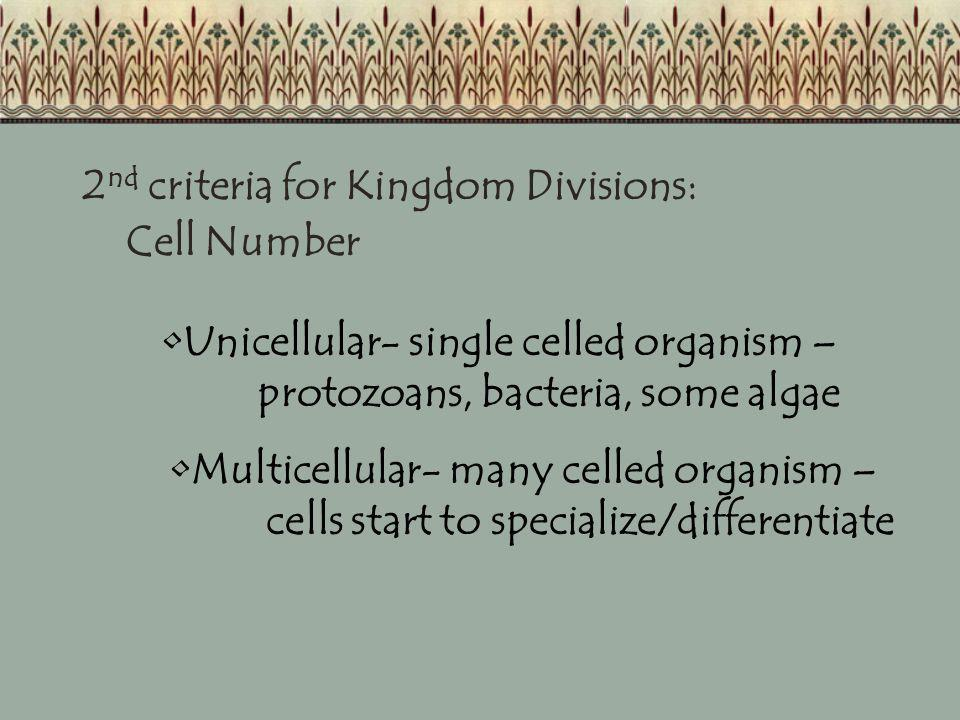 2nd criteria for Kingdom Divisions: