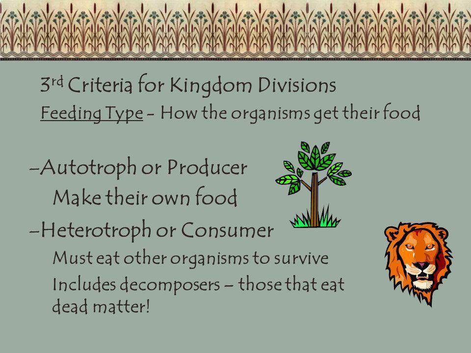 3rd Criteria for Kingdom Divisions