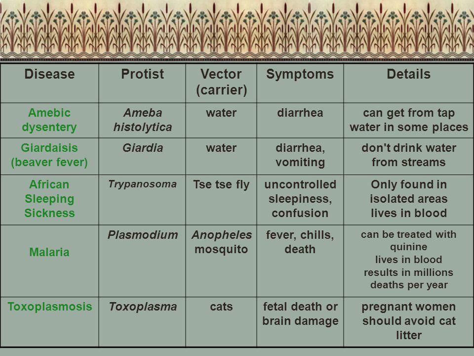 Disease Protist Vector (carrier) Symptoms Details