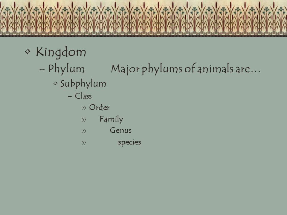 Kingdom Phylum Major phylums of animals are… Subphylum Class Order