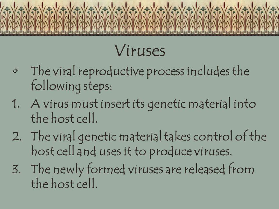 Viruses The viral reproductive process includes the following steps:
