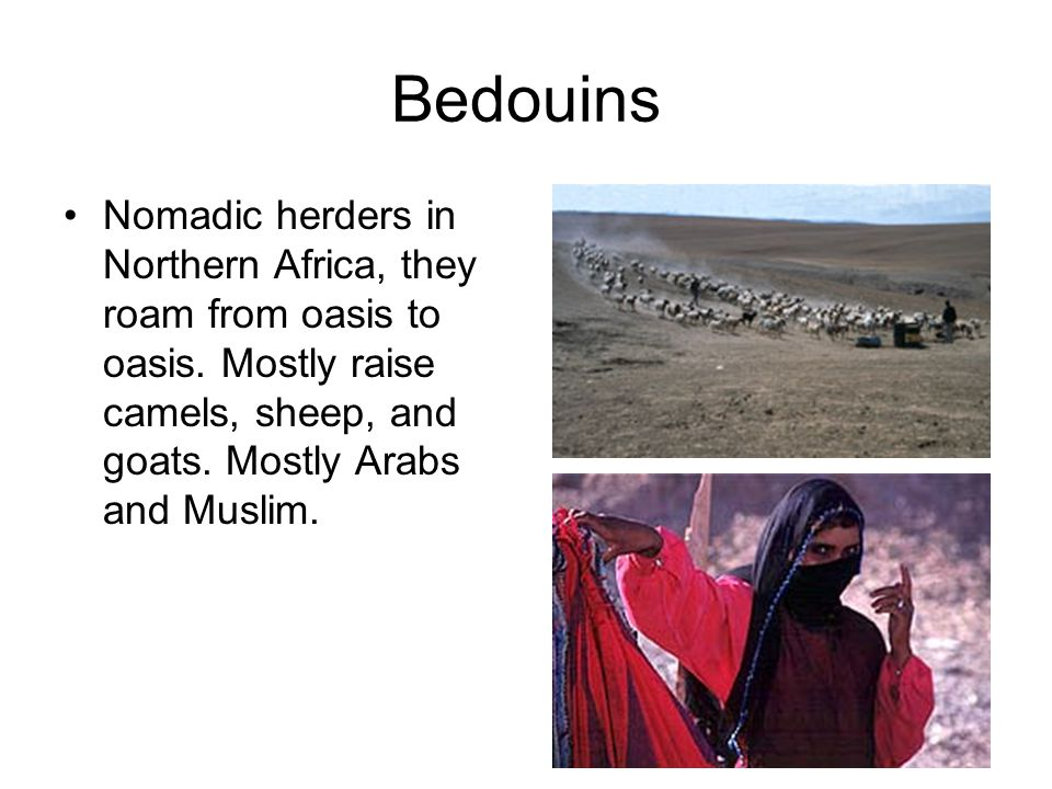 Bedouins Nomadic herders in Northern Africa, they roam from oasis to oasis.