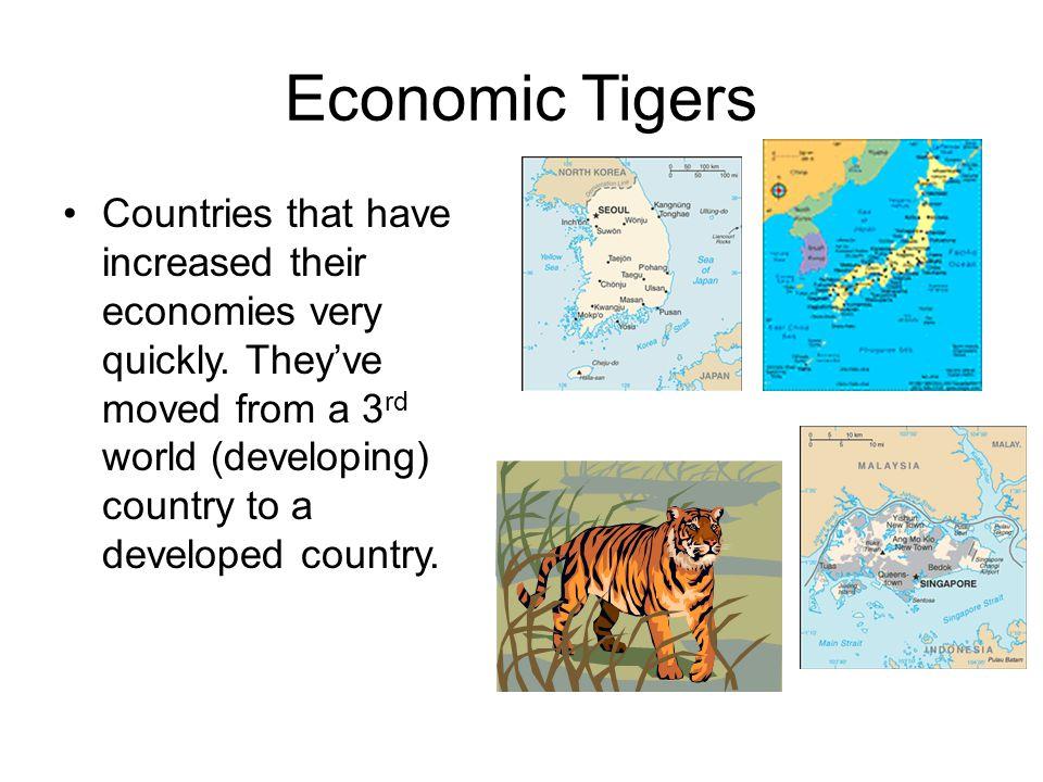 Economic Tigers
