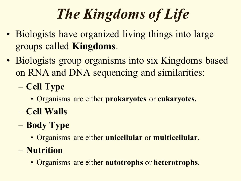 The Kingdoms of Life Biologists have organized living things into large groups called Kingdoms.