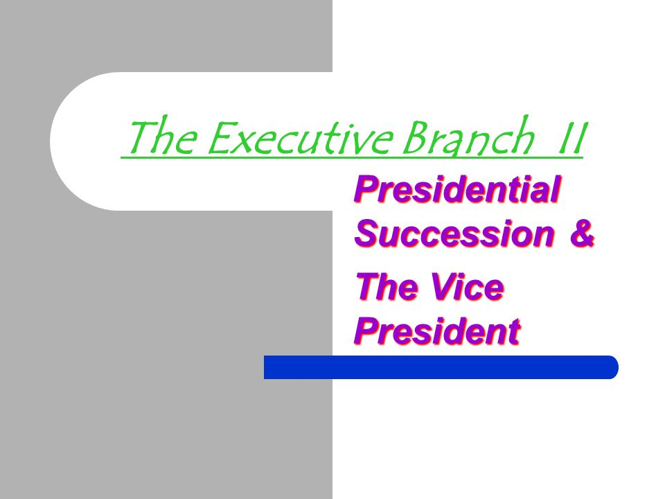 The Executive Branch II