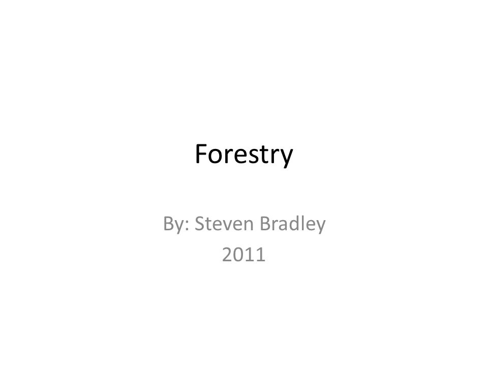Forestry By: Steven Bradley 2011