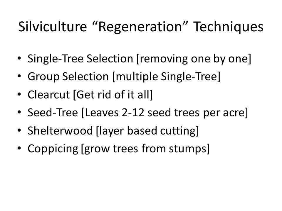 Silviculture Regeneration Techniques