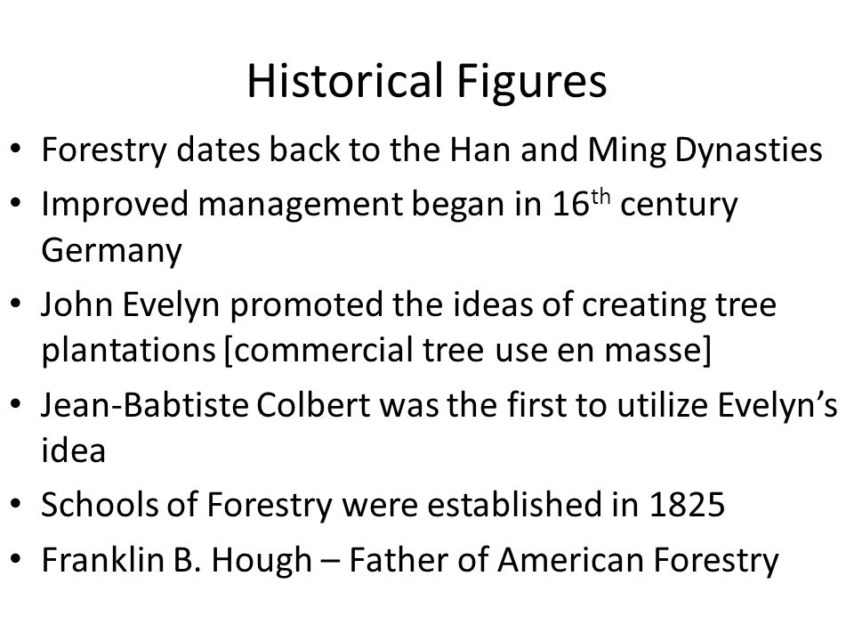 Historical Figures Forestry dates back to the Han and Ming Dynasties