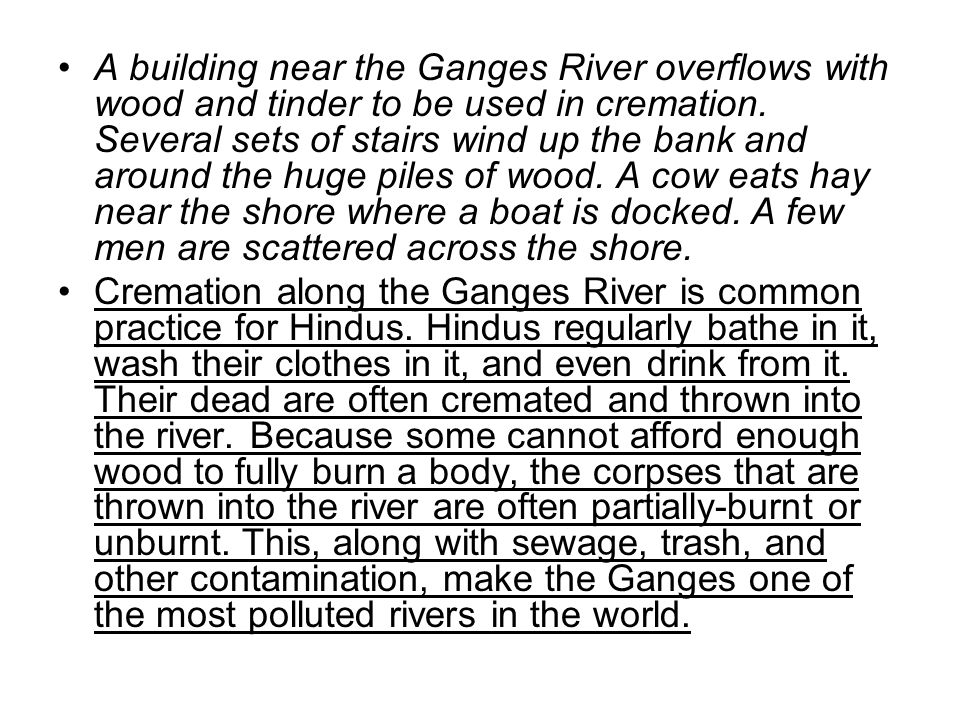 A building near the Ganges River overflows with wood and tinder to be used in cremation. Several sets of stairs wind up the bank and around the huge piles of wood. A cow eats hay near the shore where a boat is docked. A few men are scattered across the shore.