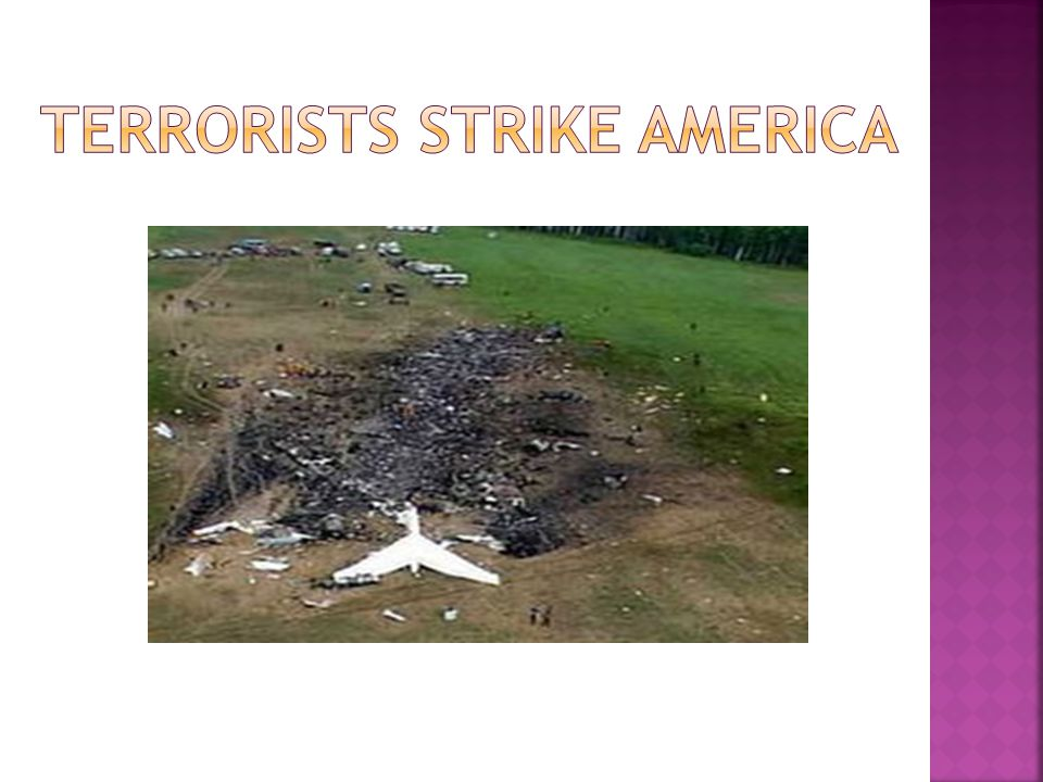 Terrorists strike america