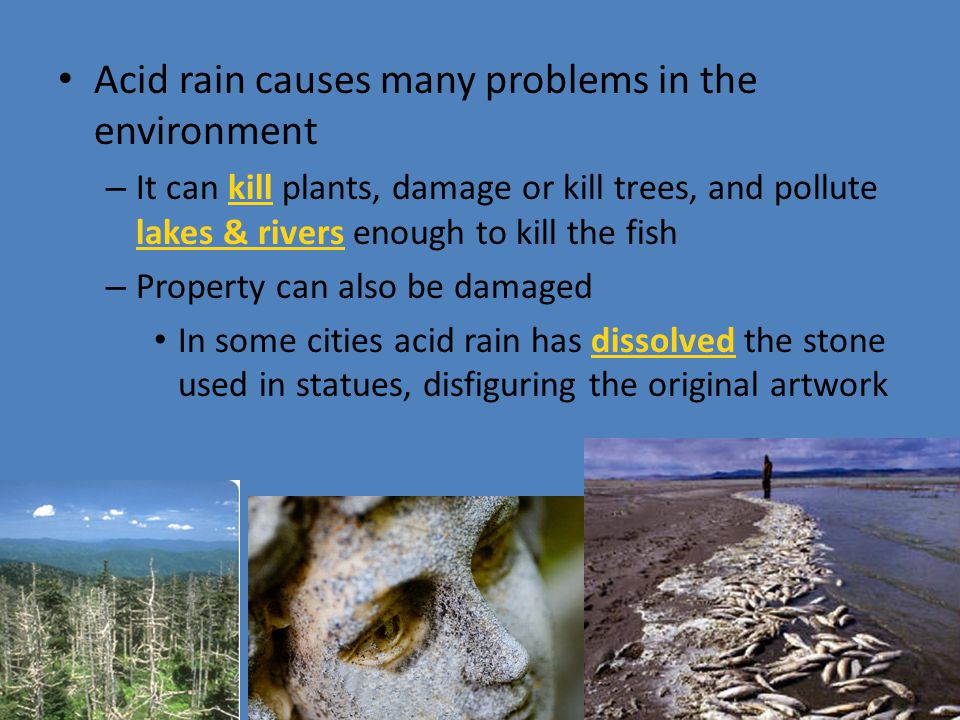 Acid rain causes many problems in the environment