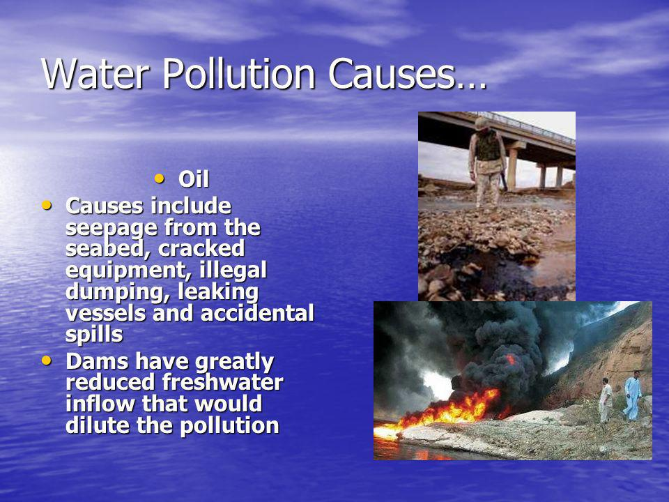 Water Pollution Causes…