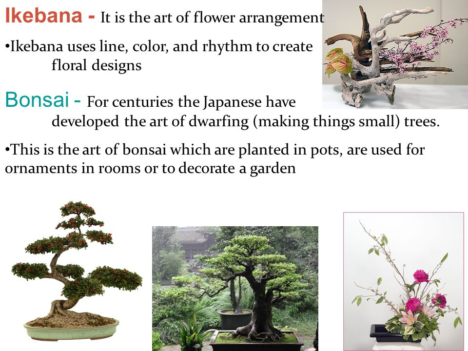 Ikebana - It is the art of flower arrangement