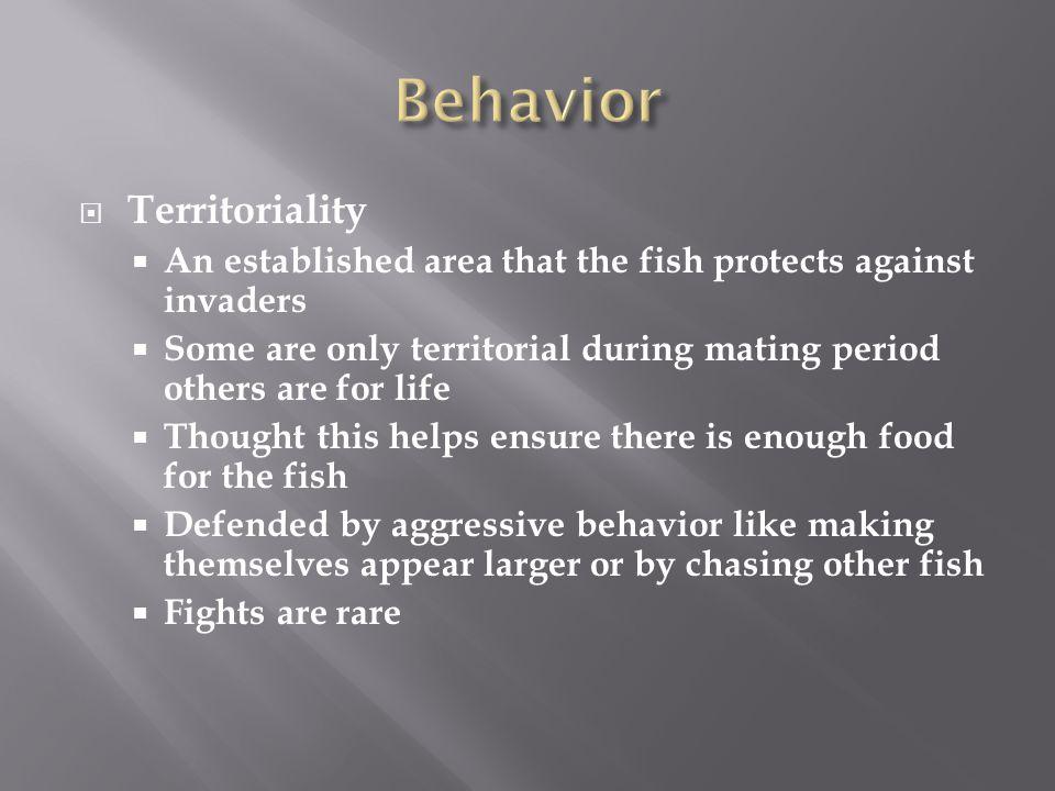 Behavior Territoriality