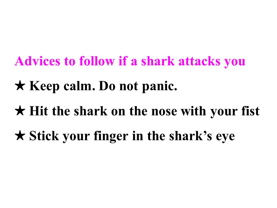 Advices to follow if a shark attacks you