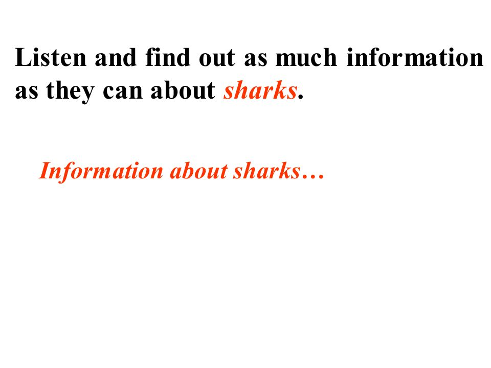 Information about sharks…