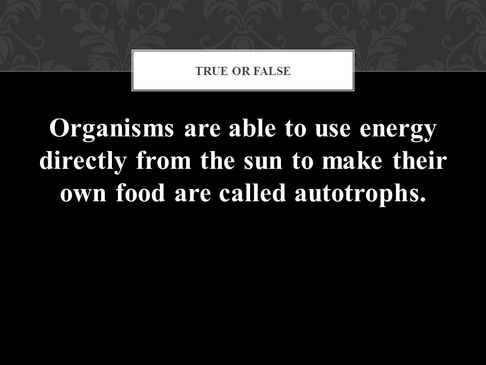 True or False Organisms are able to use energy directly from the sun to make their own food are called autotrophs.