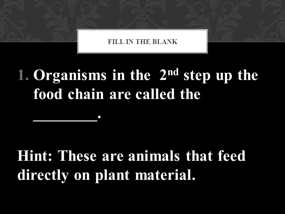 Organisms in the 2nd step up the food chain are called the ________.