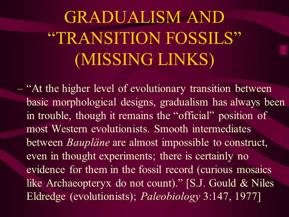 GRADUALISM AND TRANSITION FOSSILS (MISSING LINKS)