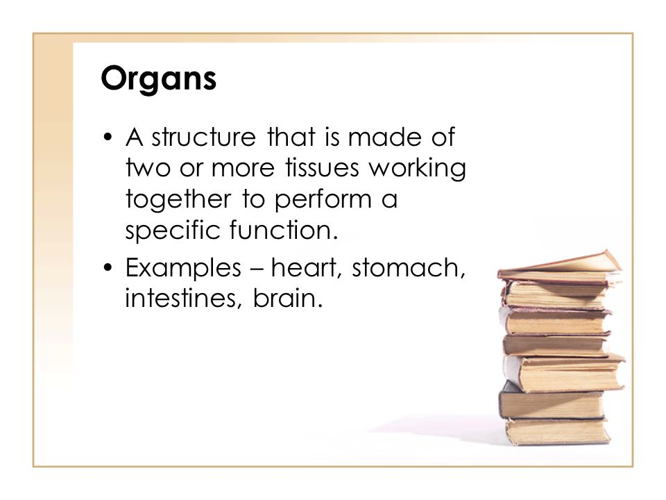 Organs A structure that is made of two or more tissues working together to perform a specific function.