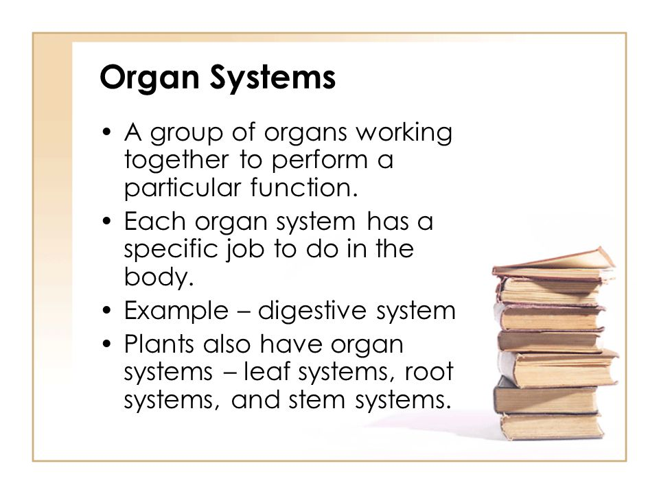 Organ Systems A group of organs working together to perform a particular function. Each organ system has a specific job to do in the body.