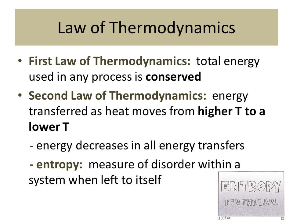 Law of Thermodynamics First Law of Thermodynamics: total energy used in any process is conserved.