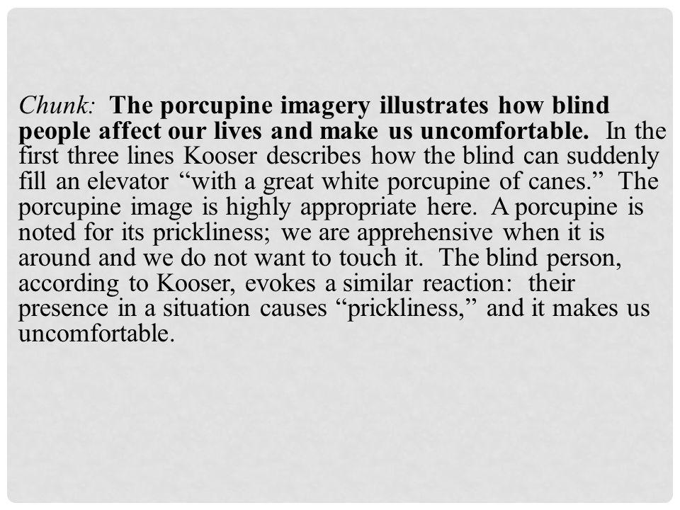 Chunk: The porcupine imagery illustrates how blind people affect our lives and make us uncomfortable.