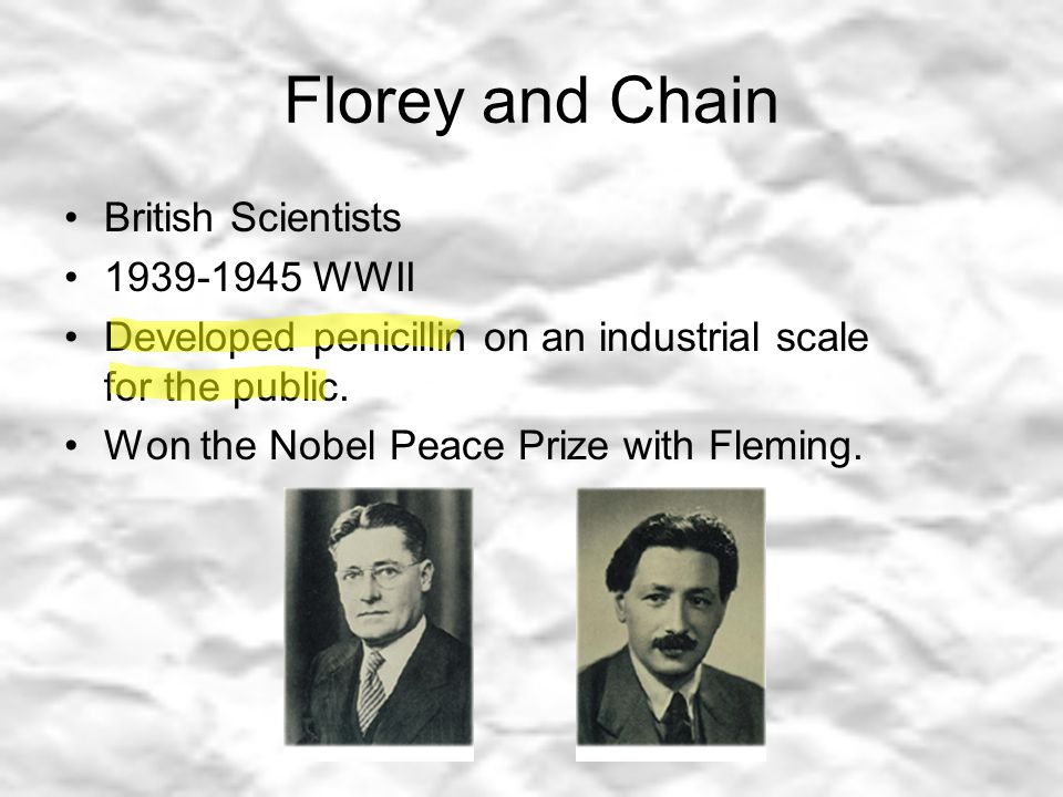 Florey and Chain British Scientists 1939-1945 WWII