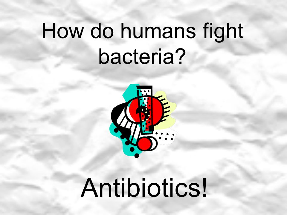 How do humans fight bacteria