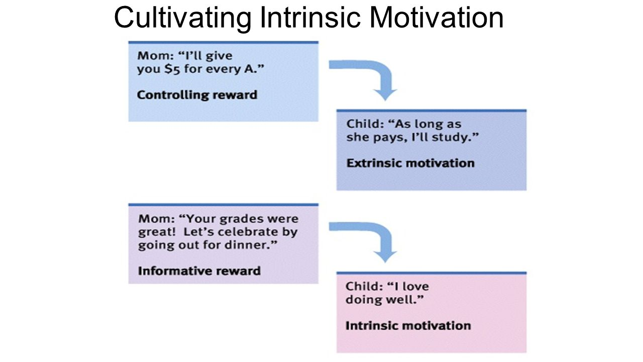 checkpoint intrinsic andy extrinsic motivation Work extrinsic and intrinsic motivation scale: its value for organizational psychology research maxime a tremblay, ce ´line m blanchard, sara taylor, and luc g pelletier.