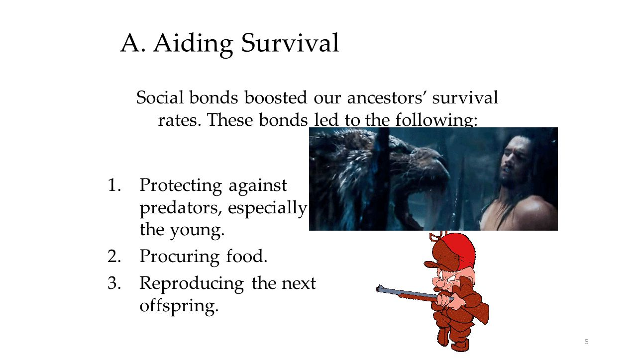 A. Aiding Survival Social bonds boosted our ancestors' survival rates. These bonds led to the following: