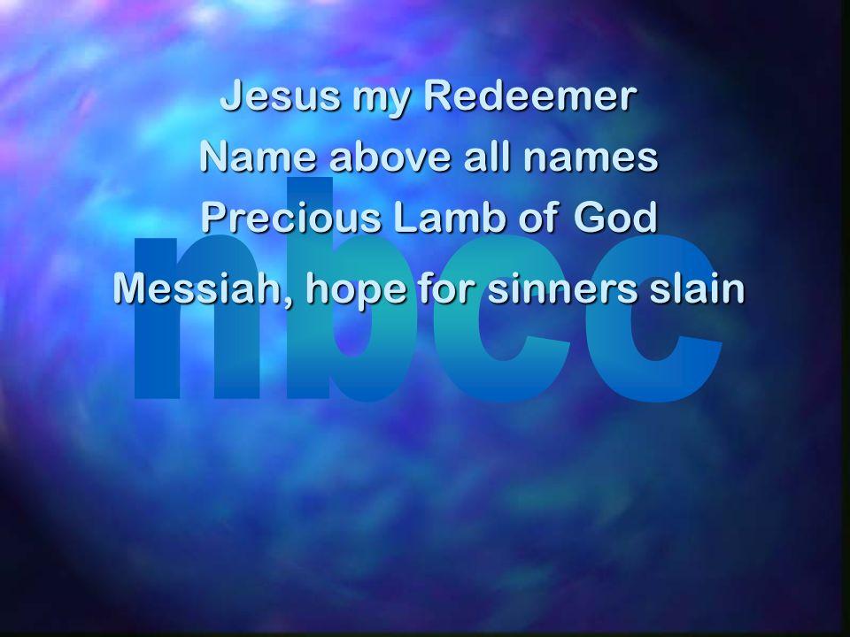 Messiah, hope for sinners slain