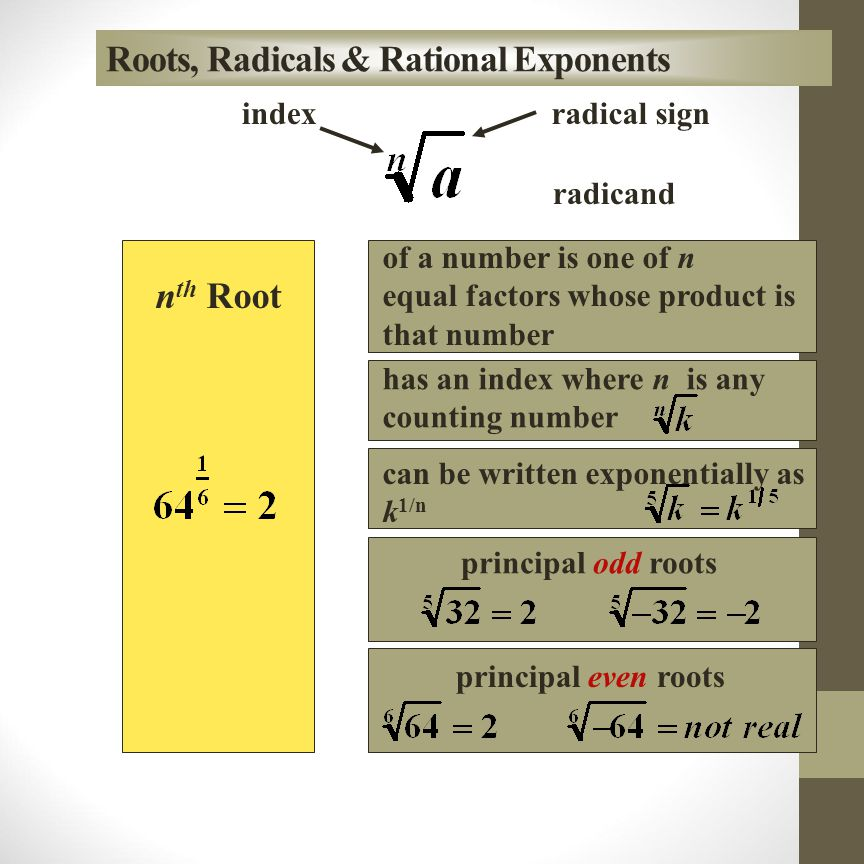 Roots, Radicals & Rational Exponents