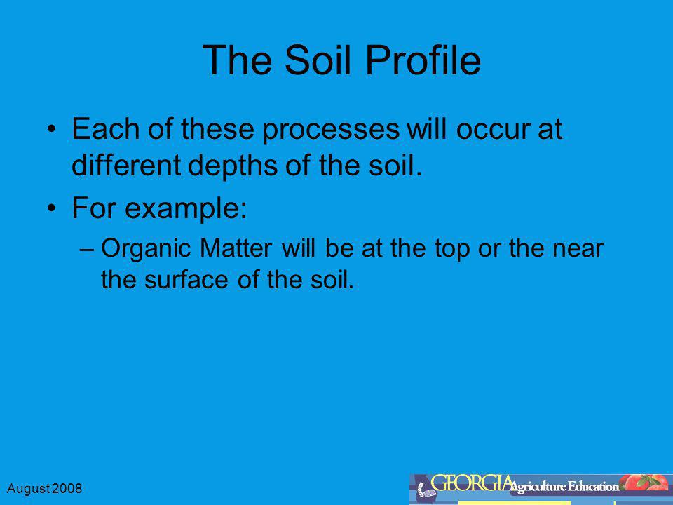 The Soil Profile Each of these processes will occur at different depths of the soil. For example: