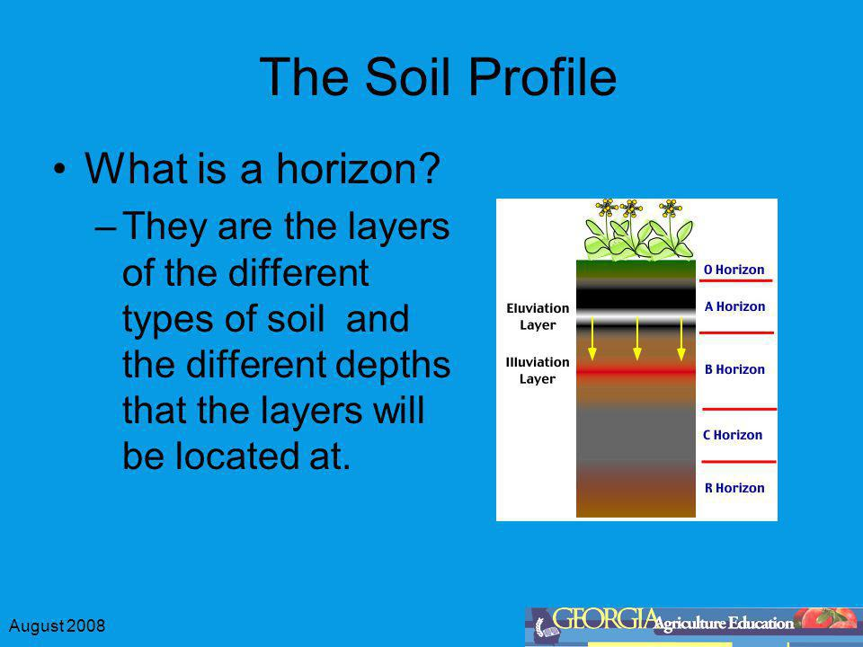 The Soil Profile What is a horizon