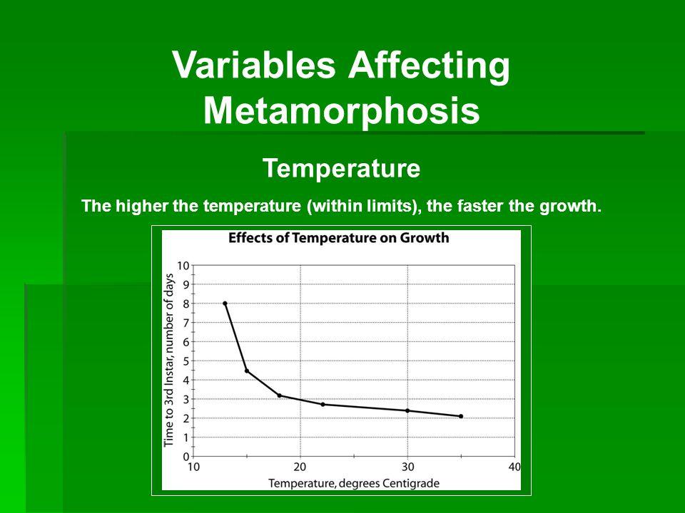 Variables Affecting Metamorphosis