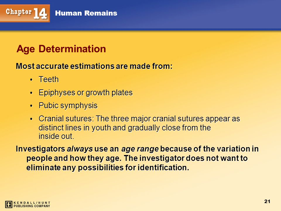 Age Determination Most accurate estimations are made from: Teeth