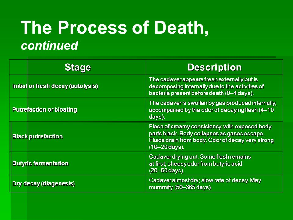 The Process of Death, continued