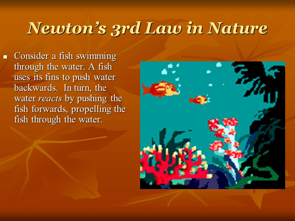 Newton's 3rd Law in Nature